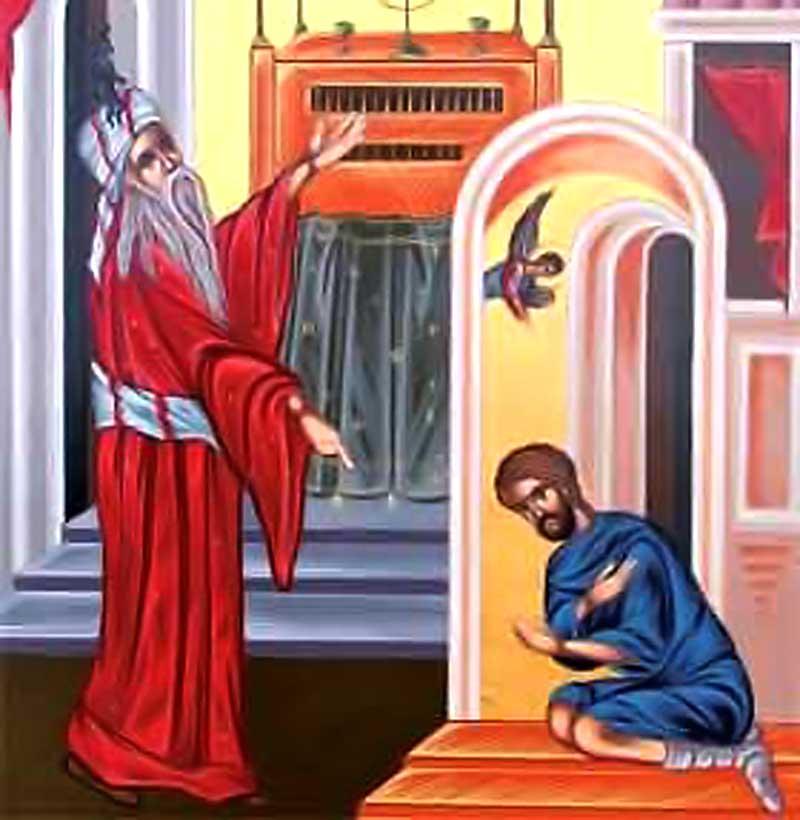 vamesul_fariseul